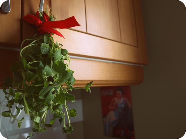 Aromatyczne zioła zawsze pod ręką
