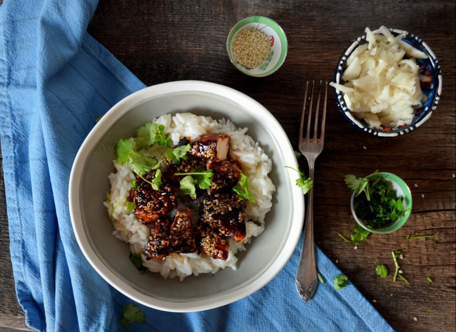 Teriyaki chicken (super easy)